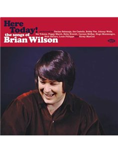 Brian Wilson Tribute - Here Today! - 12' LP (2016)
