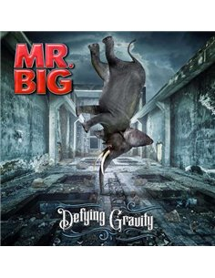 Mr Big - Defying Gravity - 12' LP (2017)
